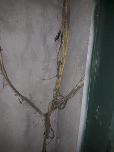 Dây điện dọc hố không đúng chủng loại